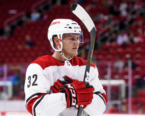 Assessing the Carolina Hurricanes defensemen prospects